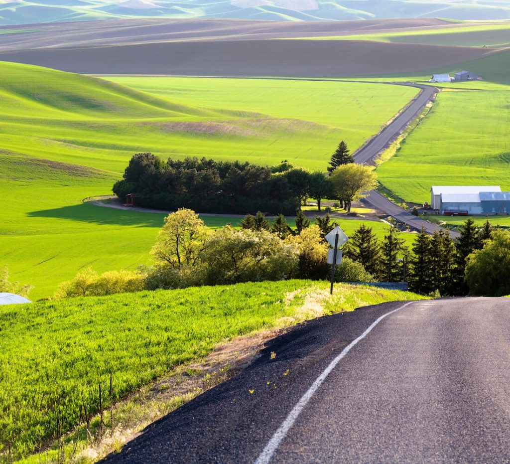 Rolling farmland in the evening in eastern Washington's Palouse region.