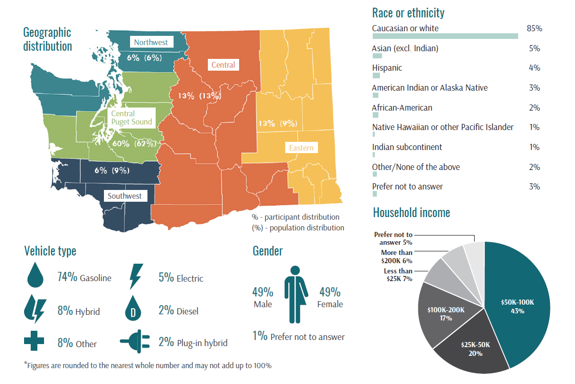 A detailed infographic describing the demographic information of participants in the pilot project